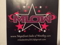 MLOWDecal